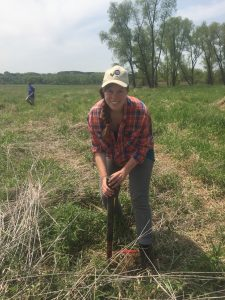 Agroecology student Greta Landis taking samples, June 2016